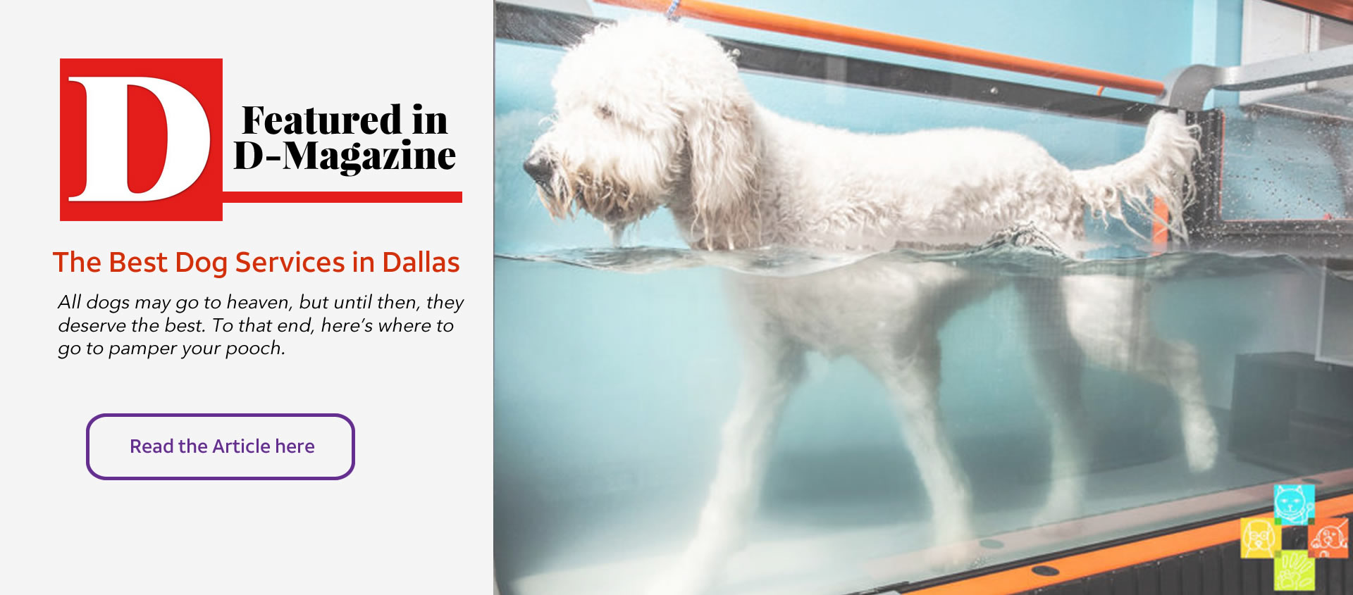 Dog kennel dog groomer dog grooming dog boarding in dallas our mission is to offer a full array of convenience oriented services to make your life easier and to keep you and your pets drooling solutioingenieria Images