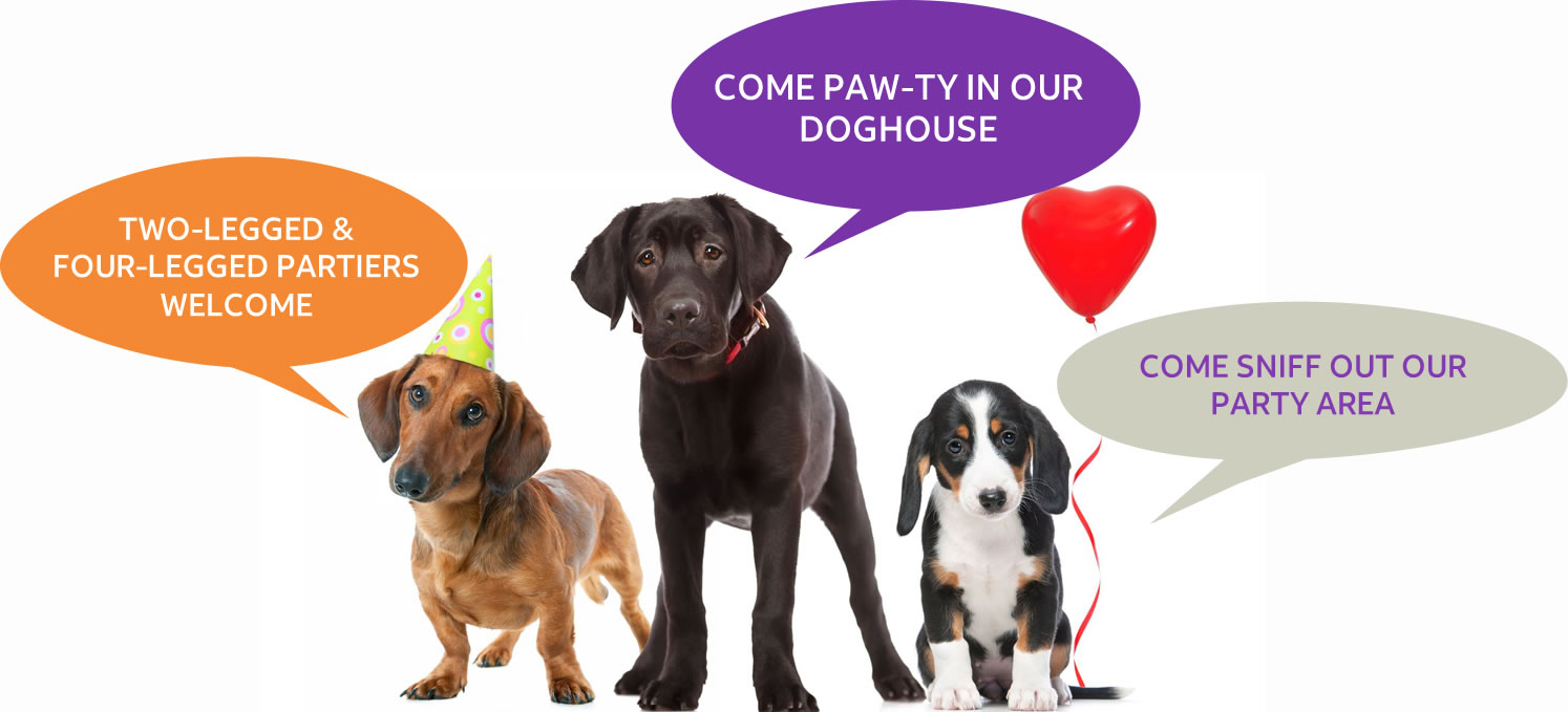 All Parties Are Hosted In Our Indoor Oudoor Paw Ty Space Called Unleashed It Is Approximately 600 Sq Ft Of Private Moderately Temperature Controlled